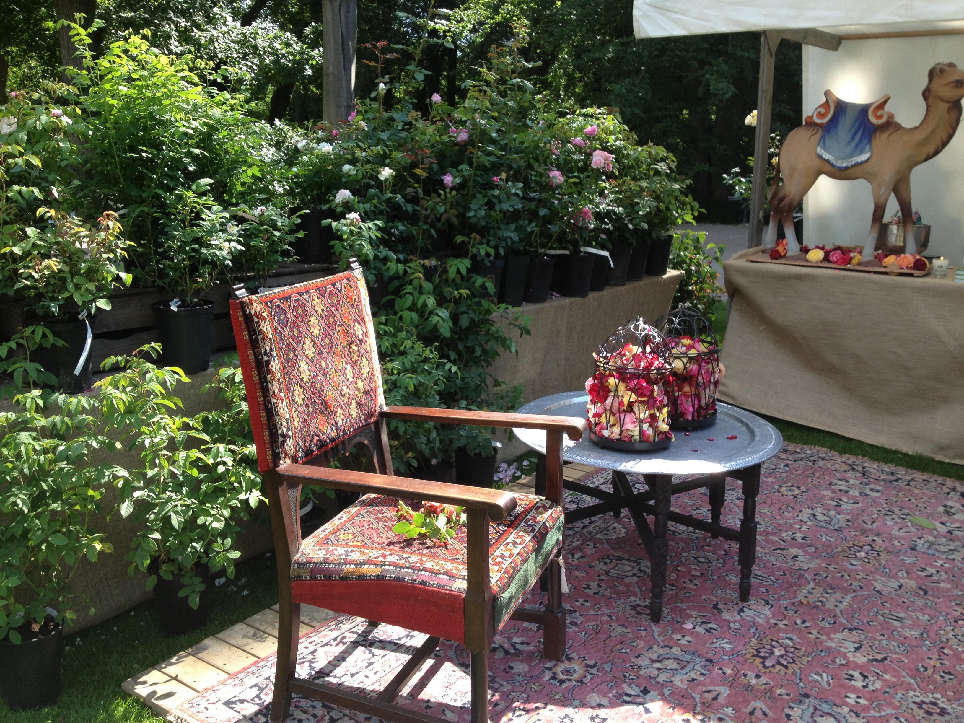 Den stora trädgårdsfesten sofiero slott 2013   luna eks trädgårdsblogg