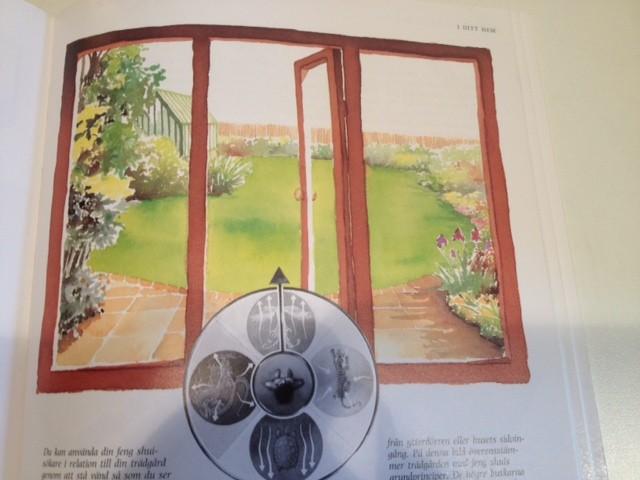 bild kopia 19
