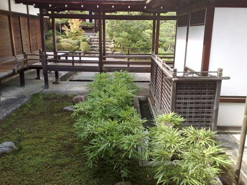 japansktradgard