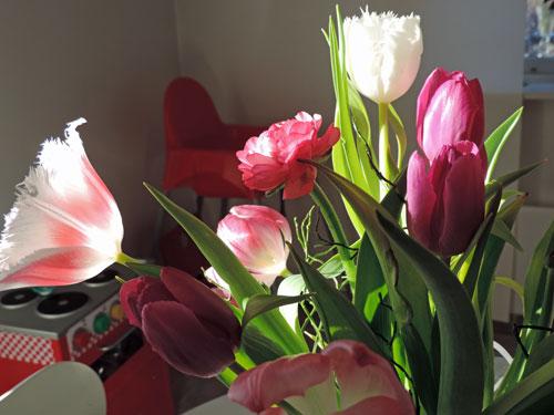 blommorjanuari