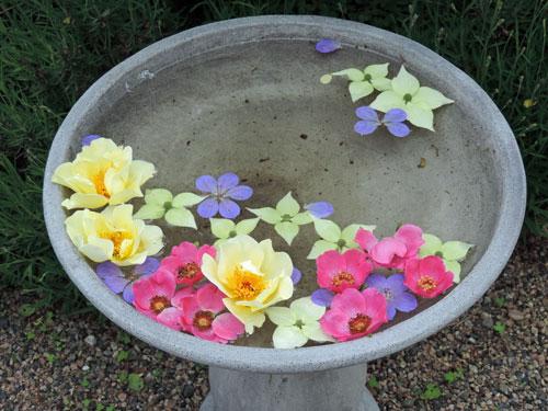 blomvatten