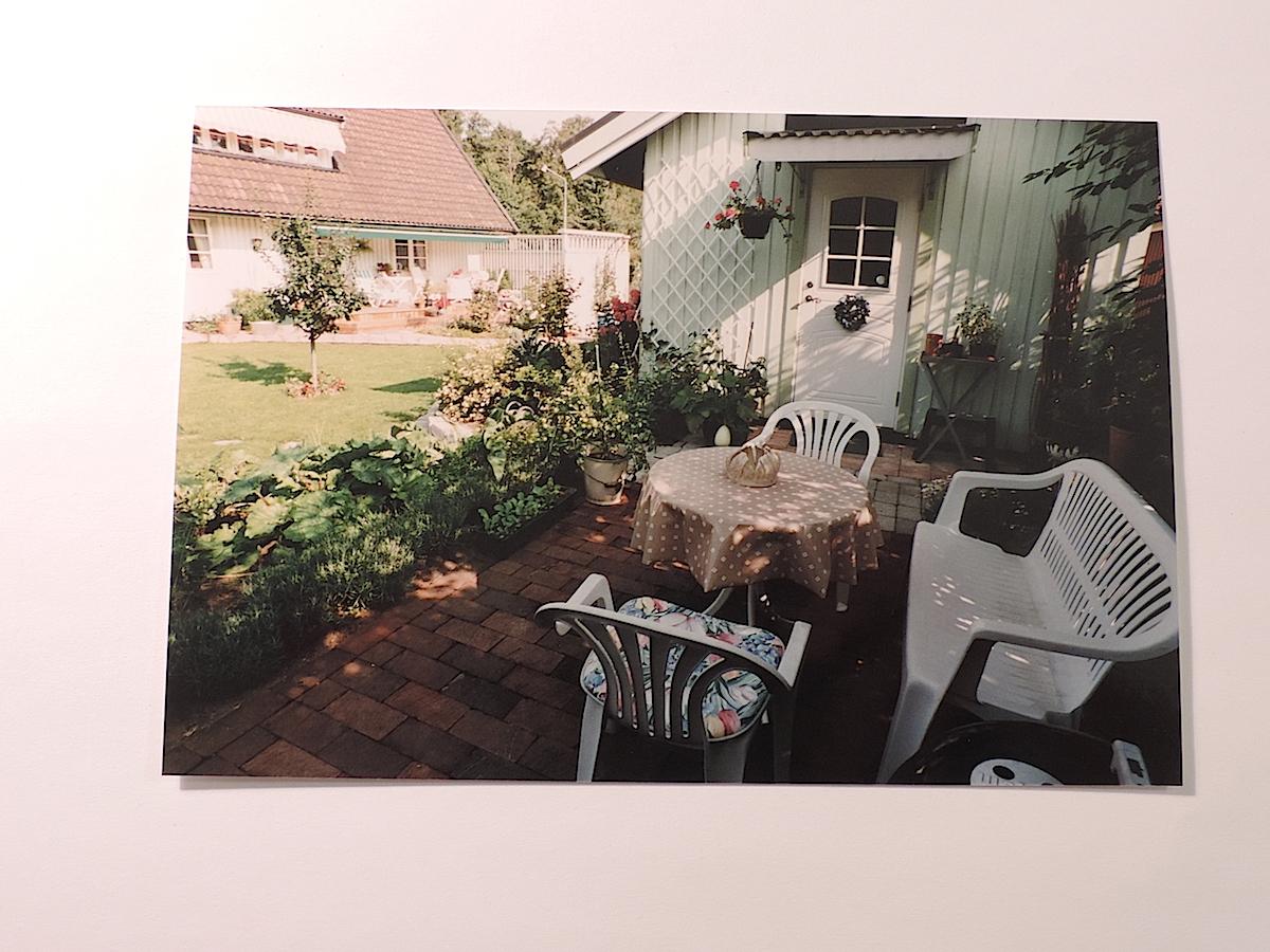 Naverlönn-arkiv - Luna Eks trädgårdsblogg