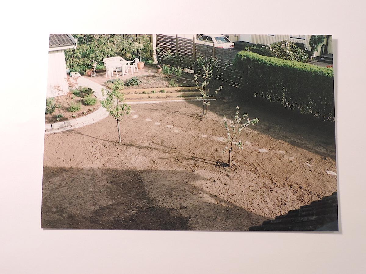 Insynsfritt arkiv   luna eks trädgårdsblogg