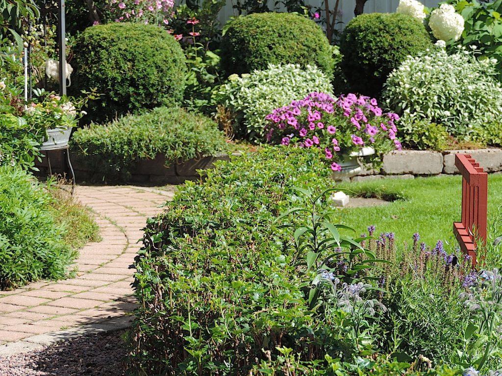 Okategoriserade arkiv   sida 2 av 19   luna eks trädgårdsblogg