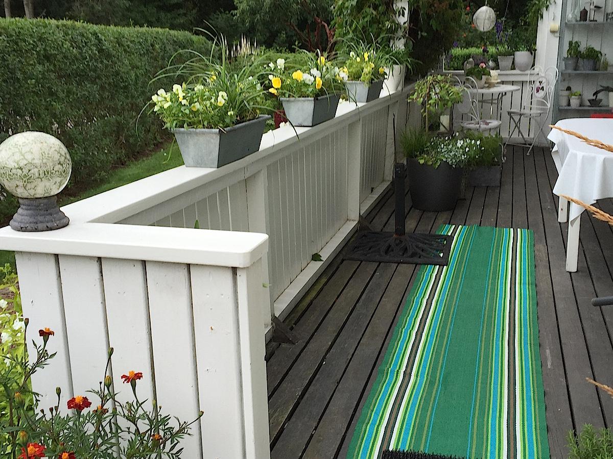 Renovering och trädgård - Luna Eks trädgårdsblogg