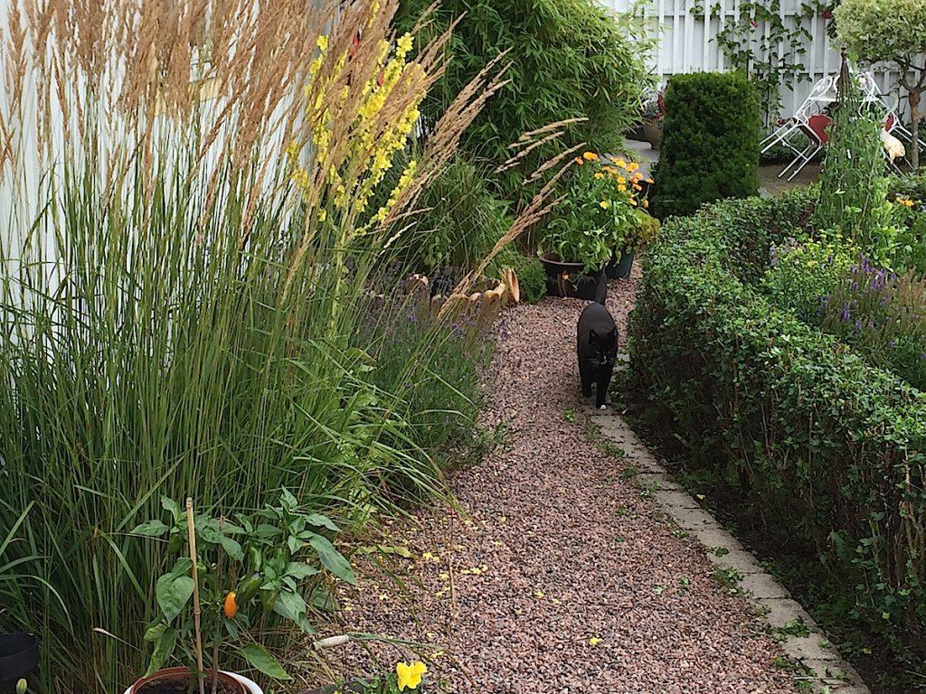 Trädgårddesign arkiv   sida 2 av 46   luna eks trädgårdsblogg