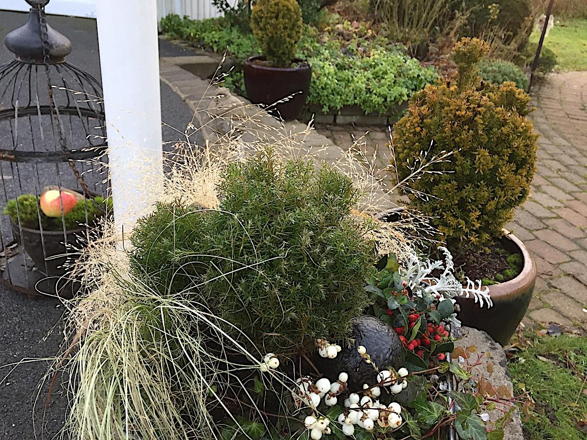Luna eks trädgårdsblogg   trädgård, trädgårdsdesign, feng shui
